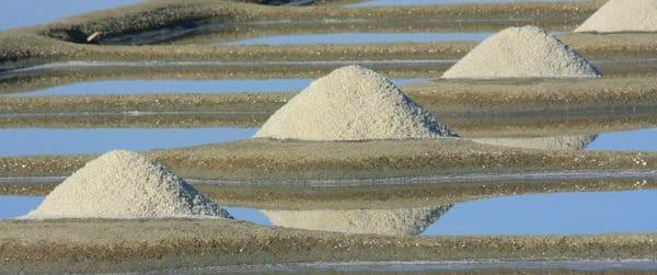 L'activité salicole en baie de Bourgneuf